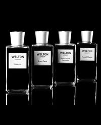 Perfumy Intense Wood by Welton