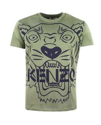 T-shirt Tiger 4-16 lat