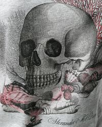 T-shirt z czaszką