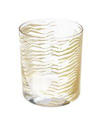 Zestaw sześciu szklanek Zebra Gold