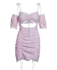 Sukienka Amalie Mini